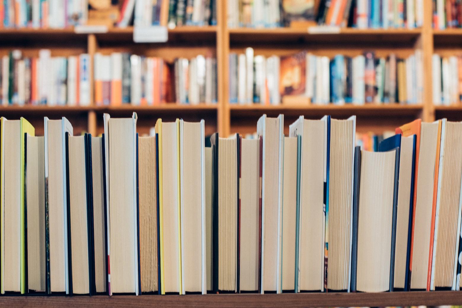 Nachbarn Buch